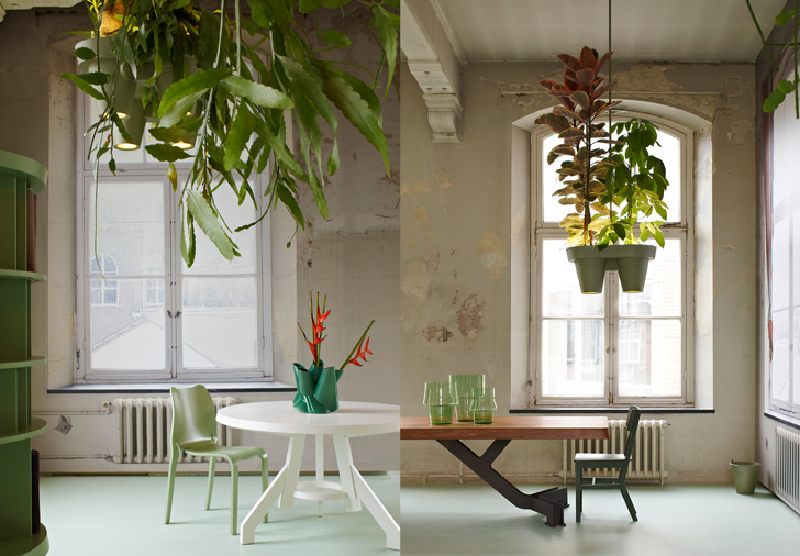 lusteri biljke