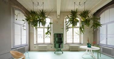 lusteri i biljke