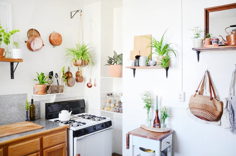 biljke u kuhinji