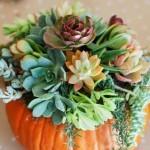 Cvijeće u bundevi je hit dekor na Instagramu ove jeseni