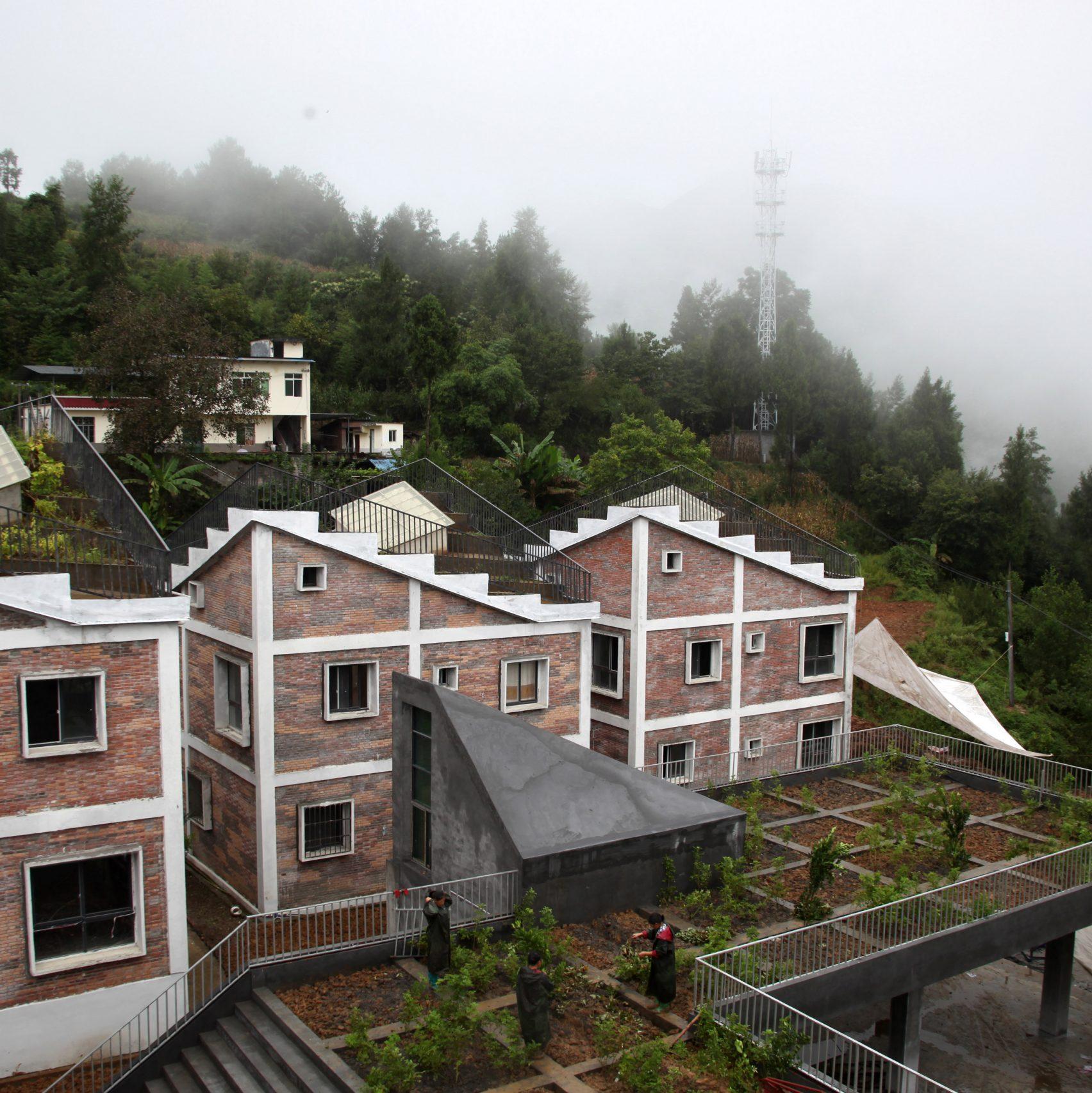 jintais selo