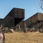 Kokošvaroš: Arhitekti osmislili dizajnersku farmu u Hrvatskoj