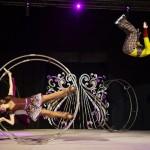 Veliko interesovanje za cirkus na ledu 17. januara u Banjaluci