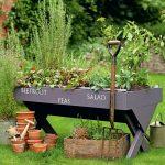 Zašto je vrtlarstvo dobro za zdravlje?
