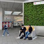 Postavljene klupe za filtriranje vazduha, djeluju kao 275 pravih stabala