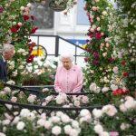 Najbolje s ovogodišnje Kraljevske izložbe cvijeća