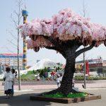 Pogledajte drvo kojim je Lego ušao u Ginisovu knjigu rekorda