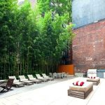 Bambus kao zelena ograda u dvorištu