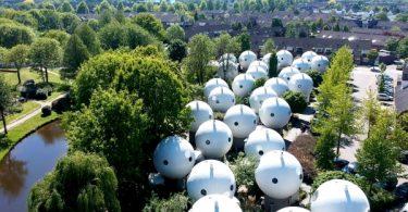 kuce u obliku lopte holandija