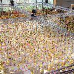 Pola miliona suvih cvjetova za umjetničku instalaciju