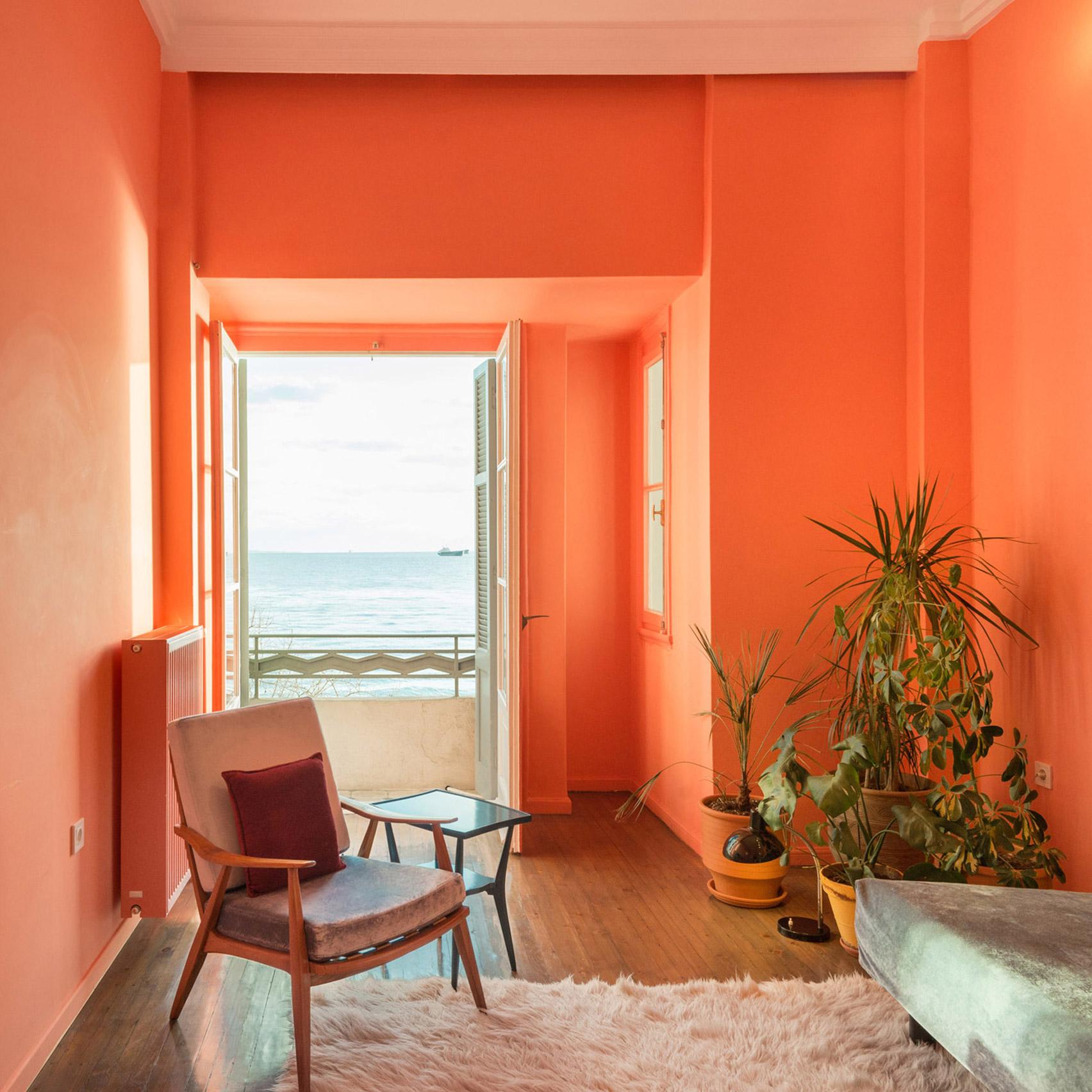 zidovi u boji koralja