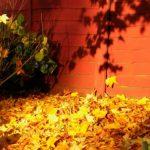 Ne bacajte opalo lišće, odlično je prirodno gnojivo za vaše travnjake